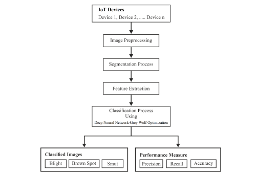 IoT based Wheat Leaf Disease Classification using Hybridization of Optimized Deep Neural Network and Grey Wolf Optimization Algorithm